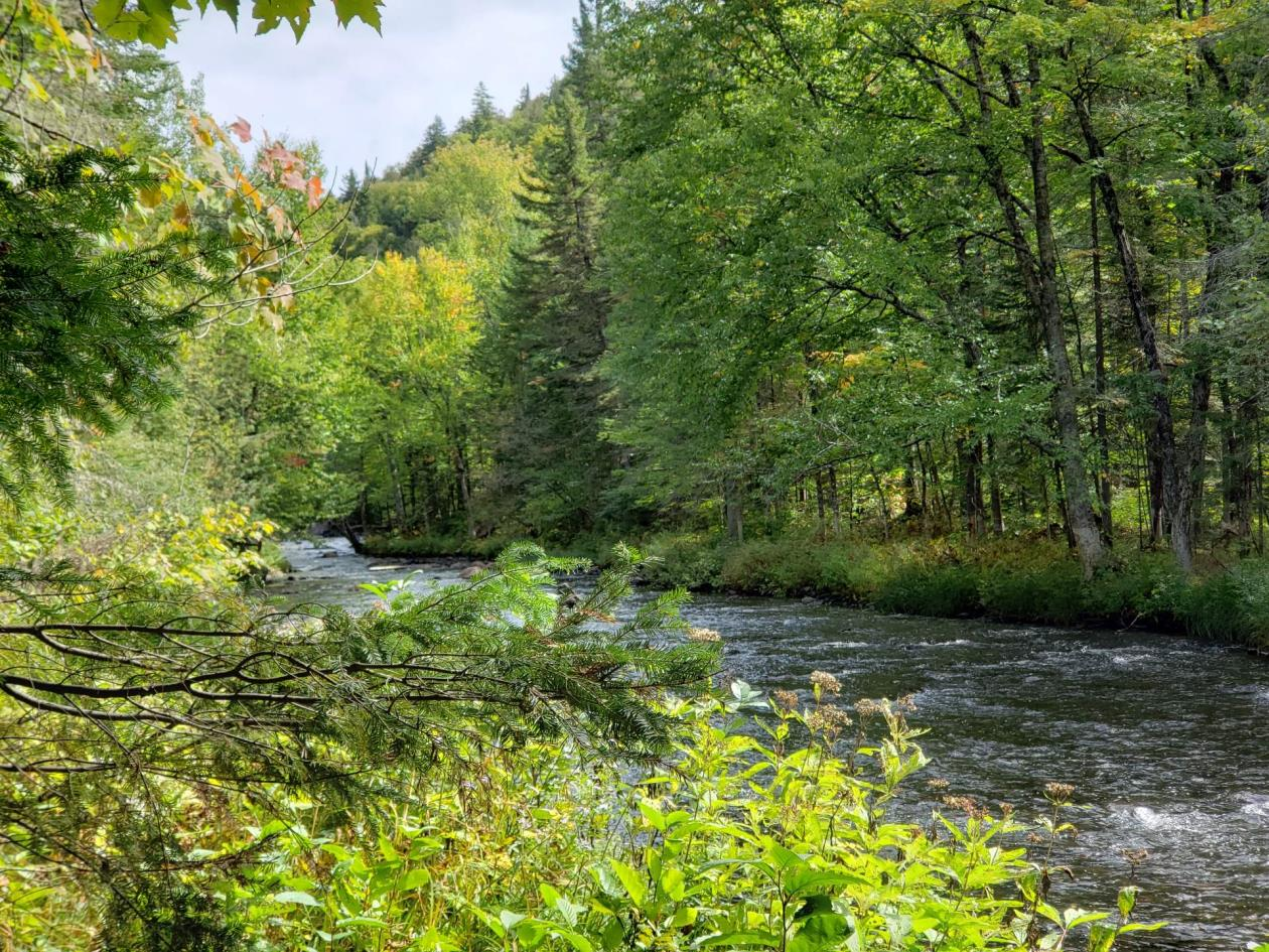 Waterside lot in Lac Superieur for sale with Archambault Watherfall view