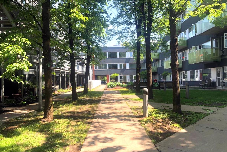 Appartement à louer dans Benny Farm à NDG